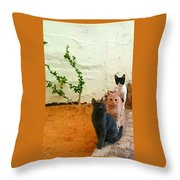 3 Cats Throw Pillow