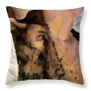 Cave Art: Horse Throw Pillow