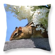 Chipmunk Chillin' On The Railin' Throw Pillow