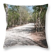 Coba Throw Pillow