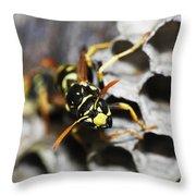 Common Wasp Vespula Vulgaris Throw Pillow
