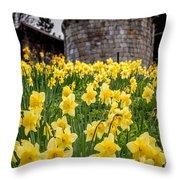 Daffodils And Bar Walls, York, Uk. Throw Pillow