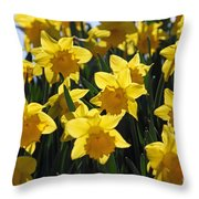 Daffodils In The Sunshine Throw Pillow