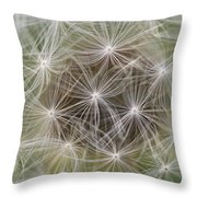 Dandelion Close-up. Throw Pillow