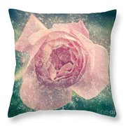 Digitally Manipulated Pink English Rose  Throw Pillow