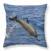 Dolphins Leaping Throw Pillow