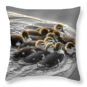 Duckling Wake Brown Throw Pillow