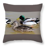 Ducks Throw Pillow