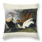 Eider Duck Throw Pillow