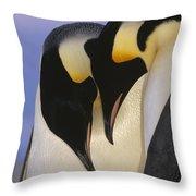 Emperor Penguin Aptenodytes Forsteri Throw Pillow