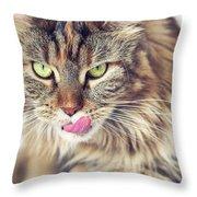 Face Sleeping Cat Throw Pillow