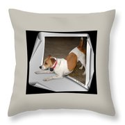 Feeling Frisky Throw Pillow