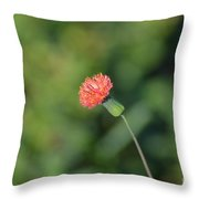 Flor Silvestre Throw Pillow