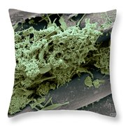 Flossing Throw Pillow