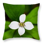 Flower Throw Pillow by Adnan Bhatti