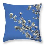 Flowering Trees Throw Pillow
