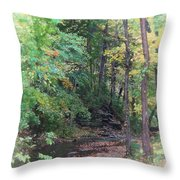 France Park Throw Pillow