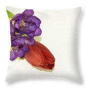 Freesia And Tulip Throw Pillow