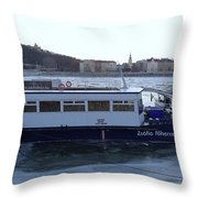 Genre Picture By Frozen Danube Throw Pillow