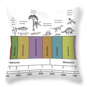 Geologic Time Line Throw Pillow