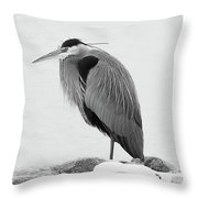 Great Blue Heron Hunting Throw Pillow