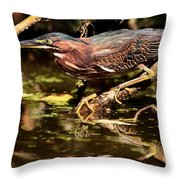 Green Heron Throw Pillow