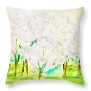 Hand Painted Picture, Spring Garden Throw Pillow