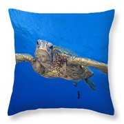 Hawaii, Green Sea Turtle Throw Pillow