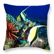 Hawaiian Reef Scene Throw Pillow