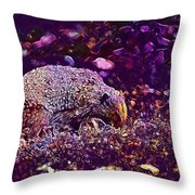 Hedgehog Animal Spur Nature Garden  Throw Pillow