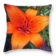 Hemerocallis Flower Throw Pillow