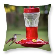 My Sweet Hummingbird Throw Pillow