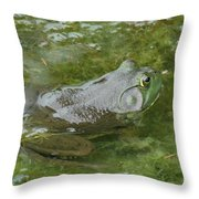 I'm Hungry Throw Pillow
