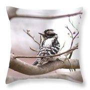 Img_0001 - Downy Woodpecker Throw Pillow