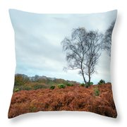 In A Distance Throw Pillow