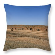 Kgalagadi Throw Pillow