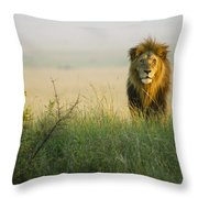 King Of The Savanna Throw Pillow