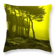 Lands' End Throw Pillow