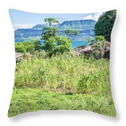 Landscape At The Lake Malawi Throw Pillow