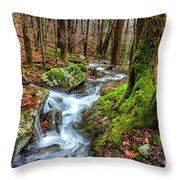 Little Laurel Branch Throw Pillow