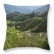 Longsheng Rice Terraces Throw Pillow