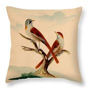 Lord's Entire New System Of Ornithology Throw Pillow