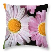 Marguerite Daisy Named Petite Pink Throw Pillow