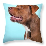Metta Throw Pillow