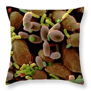 Microorganisms On Cabbage Throw Pillow