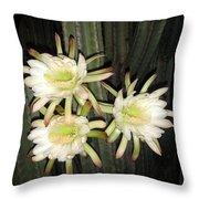 3 Midnight Stars.... White And Beautiful Throw Pillow