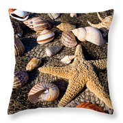Mix Group Of Seashells Throw Pillow