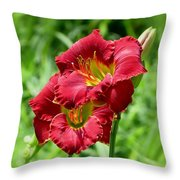 Red Lily Pair Throw Pillow