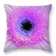Multicolor Pinks Throw Pillow
