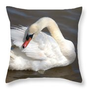 Mute Swan Grooming In Shallow Water Throw Pillow